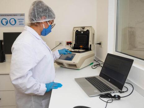 análisis PCR